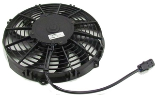 Fan 